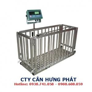 Cân heo điện tử  500kg - Cân gia súc 500kg - Cân điện tử Hưng Phát
